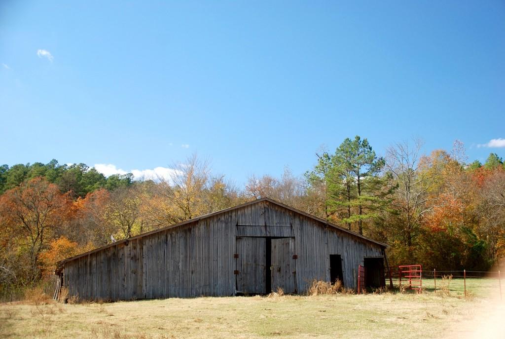 Grandpa`s Old Barn