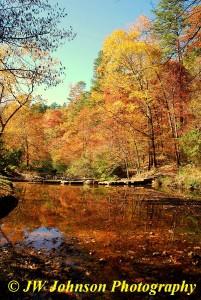 Gulpha Gorge Creek Nov 2010