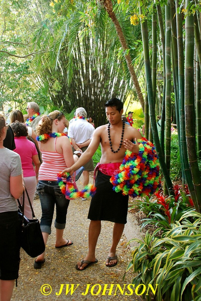 Hawaiian Performer Hands Out Leis