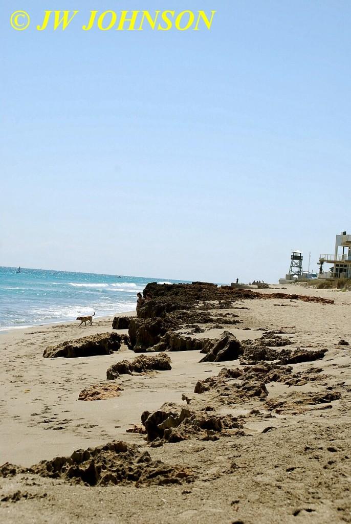 Hutchinson Island Refuge Beach 5