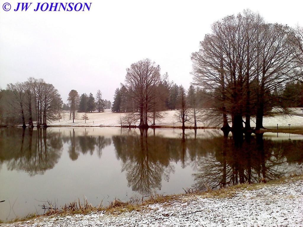 Shaws Arboretum Lake Late Feb