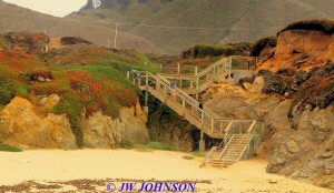Dowd Creek Beach Stairway