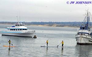 Monterey Harbor Fishermans Wharf 0920 4