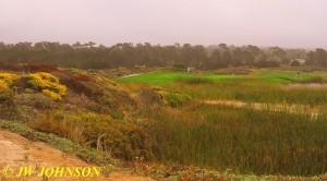 Pacific Grove Golf Course 3