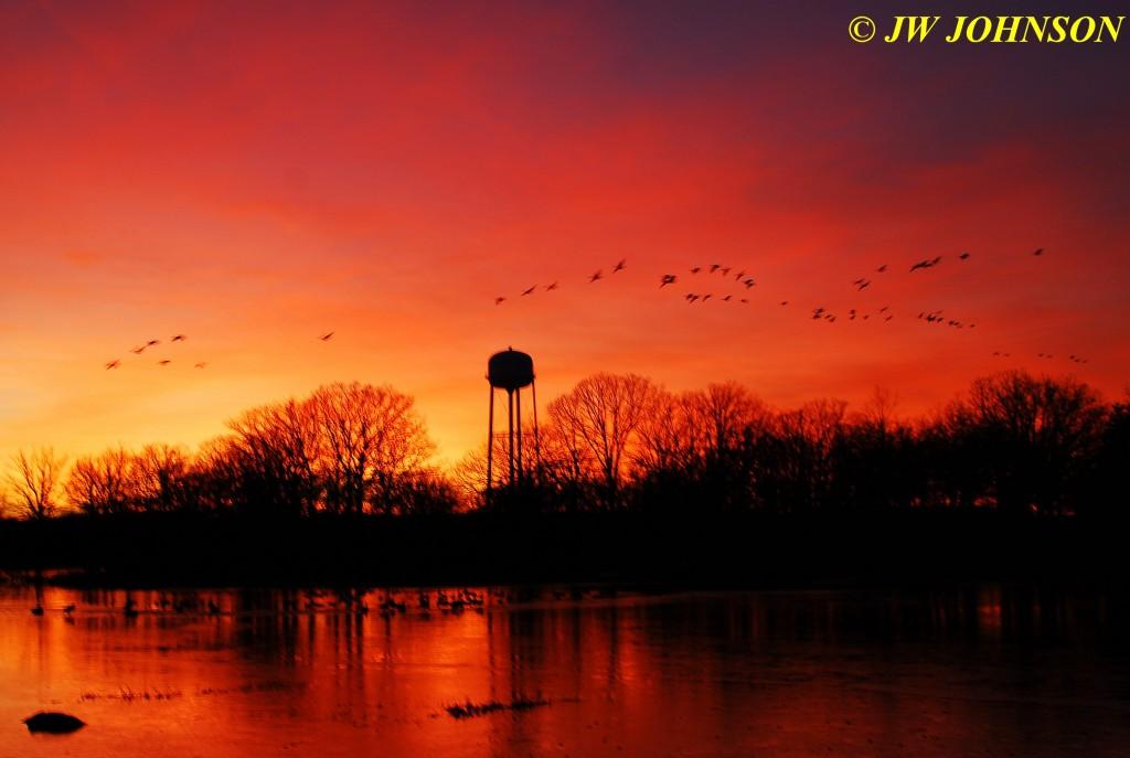 20 Geese Landing City Lake