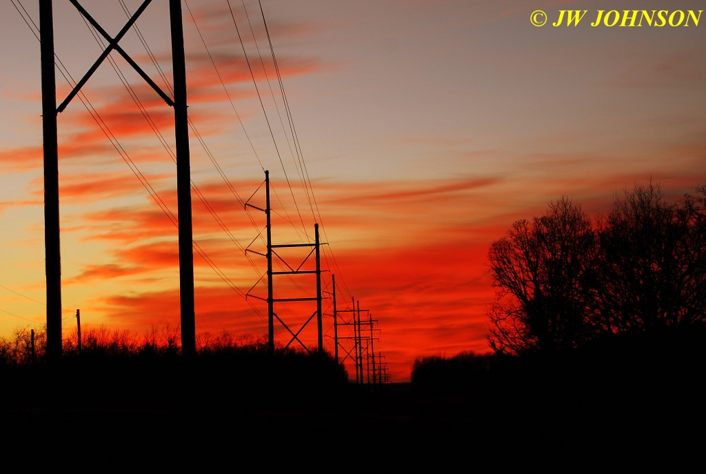 52 Powerlines Landon Rd 0119