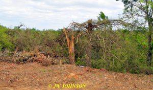 16 Tornado Damage 2016