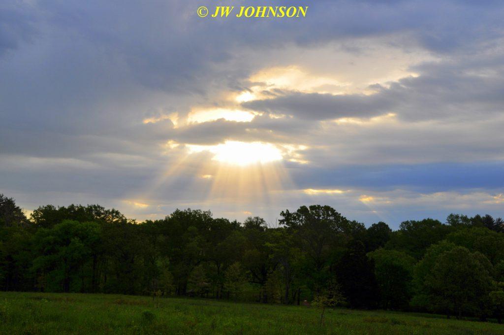 40 Sunbeam Sunrise 0504